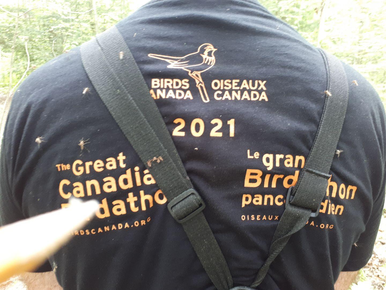 BLT BIRDERS VISIT ALL TWELVE LPBLT NATURE RESERVES – 2021 BIRDATHON REPORT